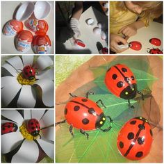How to Make Painted Ladybug from Easter Egg thumb