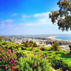 View from Ventura botanical Gardens Hike~ it is gorgeous  Endless photo ops! (C) Chris Vignes :)