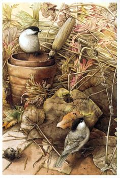 garden illustration Little bird illustration marjolein bastin 28 ideas for 2019 Love Birds Drawing, Bird Drawings, Art Et Nature, Nature Artists, Grafic Design, Decoupage, Hope Is The Thing With Feathers, Marjolein Bastin, Garden Illustration
