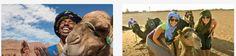 Marrakech desierto tours, Marruecos desierto tours y excursiones de una dia desde Marrakech. Marrakech Excursiones. Tours por el Sahara de Zagora y Merzouga. https://marrakech-desierto-tours.com