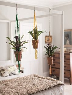 From Ham & High: hanging plants above bed. Build frame instead of canopy bed? From Ham & High: Diy Interior, Interior Exterior, Interior Design, Mid Century Modern Bedroom, Above Bed, Hanging Plants, My New Room, Decoration, Interior Inspiration