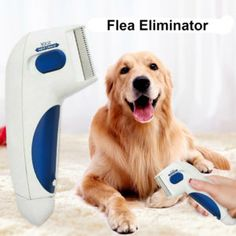 Professional Electronic Electric Flea Comb Puppies Fleas Treatment Safe Pets Kill for Dogs Cats Flea Pet Supplies Comb Tick Removal, Flea Removal, Tick Control, Flea Treatment, Cat Dog, Buy Pets, Flea And Tick, Pet Grooming, Grooming Salon