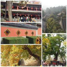 Just outside of Peking is 潭柘寺 (Tanzhe #Temple). It's a pretty nice contrast to the chaotic city life of #Beijing! #leisure #hiking