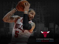 Carlos Boozer 2012-13 Chicago Bulls Wallpaper