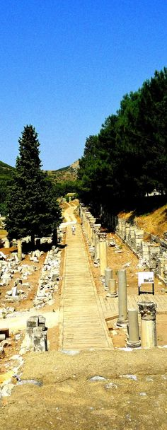 Ephesus Historical Site  http://luxurytravelboutique.cruiseholidays.com/  Looking for a #cruisetravelagency in #Oakville?  Call #CruiseHolidays | #LuxuryTravelBoutique. 855-602-6566  905-602-6566