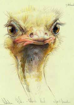 Bird anatomy pictures 50 ideas for 2019 Wildlife Paintings, Wildlife Art, Bird Drawings, Animal Drawings, Bird Doodle, Giraffe Art, Bird Silhouette, Bird Artwork, Bird Illustration
