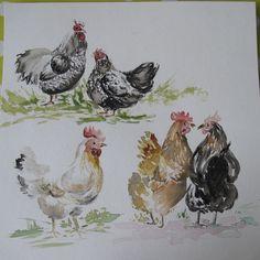 Peinture originale à aquarelle, attitudes de poules : Peintures par ma-piece-unique