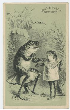 Lord & Taylor Anthropomorphic Frog Sits On Toadstool 1880's Trade Card