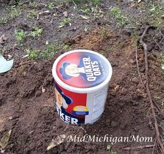 DIY: Mini Composting Worm Towers