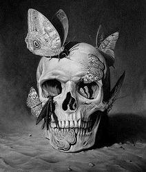 Elisandre - L'Oeuvre au Noir: L'univers surréaliste de Frank Kortan