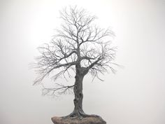 Copper wire trees - natural rock - recycled materials - oxidized copper - Bonsai trees - Penjing trees - Wabi sabi style - art sculptures