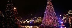 Get info on Smoky Mountain Christmas at Dollywood with the schedule of hours and dates, shows, activities, and how to purchase Dollywood Christmas tickets.