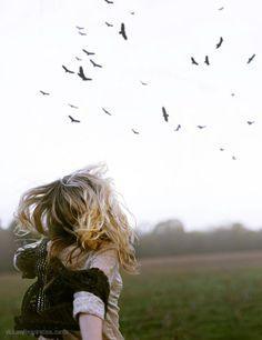 Birds in a sky