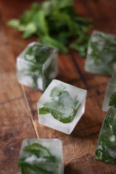 Muntblaadjes invriezen in ijsblokjes.