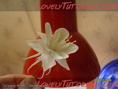 aquilegia gumpaste flower tutorial