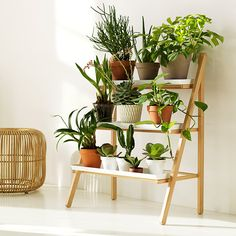 This Indoor plant stand ideas multi level diy idea for a small vertical garden indoors contemporary stands photos and collection about Indoor plant stand ideas full. Ideas for indoor plant stand Indoor Plans images that are related to it Decoration Plante, Diy Plant Stand, Tiered Plant Stand Indoor, Outdoor Plant Stands, Stand Design, Design Shop, Rack Design, House Design, Window Boxes