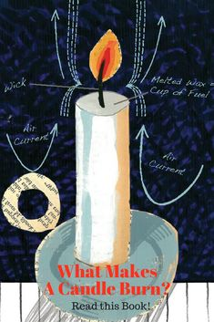 Love this book! A fascinating look at what makes a candle burn! This book is great science and STEM reading for K-3. |MimsHouse.com
