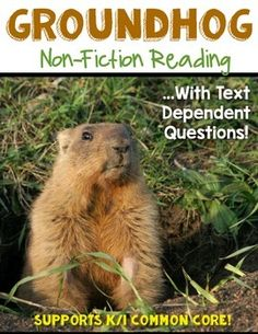 The Groundhog Facts {Non-Fiction} Close Reading & Text Dep