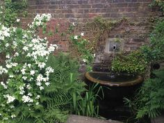 Walled garden at Fenton House in Hampstead. A magical, dreamy and romantic garden created by head gardener Andy Darragh. Well worth a visit. Photo: Palle B Pedersen.