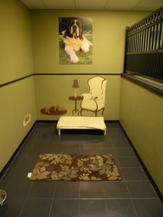 Luxury dog boarding suites inspiration room.