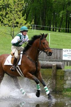 "RIP Erin Go Bragh - ""The little horse that could""  15.2 hh Connemara stallion"