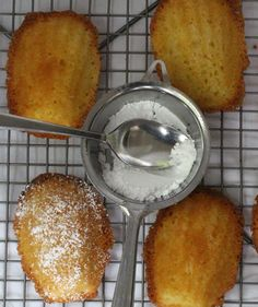 Ginger-Infused Madeleines and tips for baking madeleines | Mother Would Know