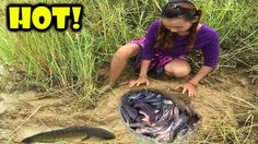 Amazing Snake Trap using Deep Hole - How to Catch Catching Giant Python ...