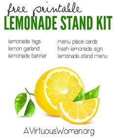 Free printable Lemonade Stand Kit - 15 pages - @ AVirtuousWoman.org