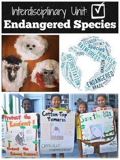 "Interdisciplinary Unit Endangered Species: kids become ""experts"" on an endangered species, and then help to spread awareness. Great for World Animal Day October 4th:)."
