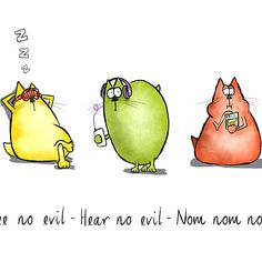 Three Wise Moggies
