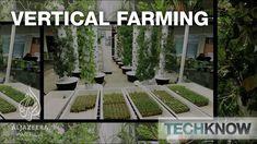 Vertical Farming - TechKnow