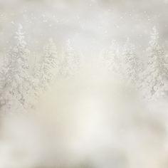 "Photo from album ""strawberries christmas"" on Yandex."