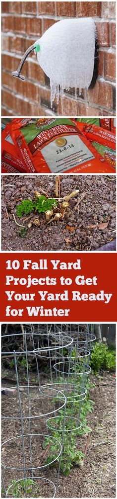 fall. fall decor. tips and tricks. fall diy. diy fall. autumn. football season. autumn recipes. fall gardening. gardening