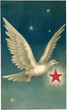 Dove with Star Images