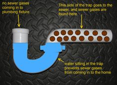 P Traps are installed under all drains to prevent foul odors from seeping up through your drain pipes. P Traps are shaped in a way that allows a small amount of water to remain in an elbow of the drain, preventing air from rising up through plumbing pipes and back into your home. Unused showers can sometimes emit an odor. To solve this, pour a bucket of water into the drain to refill your P Trap. This will solve the smelly odors coming from unused showers.