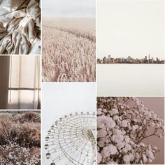 Sands of Time, the perfect neutral backdrop for your next interior design project. 12th Book, Interior Decorating, Interior Design, Matches Fashion, Neutral Palette, Sandy Beaches, Sands, Be Perfect, Backdrops
