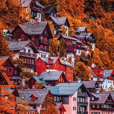 Color love❤️ #hallstatt #austria
