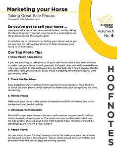 Volume 1, No. 6 has our top tips for taking great photos to showcase your sales horse to his/her full potential. This HoofNote is a follow up to HoofNote 1.4, Selling your horse, and is based on a larger article on Marketing your sale horse, featured in Issue No. 4, The Performance Horse.  Find the PDF here: http://wp.me/p3ER8w-aQ