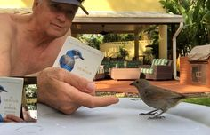 This week on The Homestretch: Naturalist Brian Keating has already spent several decades observing wildlife in this great country of ours, so he's decided to check out some of the bird brains hanging out on the island of Barbados. Interesting Animals, Barbados, Hanging Out, Wildlife, Birds, Island, Country, Check, Rural Area