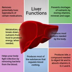 A chart showing the many functions of the liver.