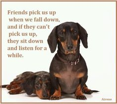 Friends | Funny Pictures!