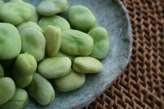 Fave: proprietà benefiche, valori nutrizionali e ricette