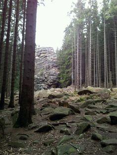 Schierke (Sachsen-Anhalt) - Feuersteinklippen