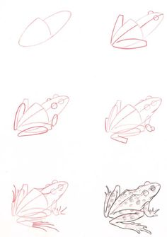 Learn to draw: Frog