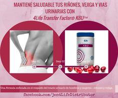 Mantiene saludable tus riñones , vejiga y vias urinarias ... 4Life Transfer Factor® KBU®
