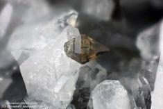 Anatase Almería, Andalusia, Spain 0.4 mm Anatase crystal. Collection & Photo Matteo Chinellato