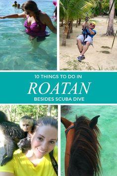 10 Things to Do in Roatan.Besides Scuba Dive 10 Things to do in Roatan, Honduras Bolivia, Honduras Travel, Roatan Honduras, South America Destinations, Cruise Port, Cruise Excursions, New York Travel, Travel Usa, Caribbean Cruise