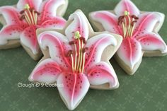 Star-gazer Lily - great illustrations and directions to make your own by Amy Clough'D 9 Cookies