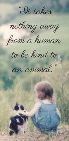 Be kind to animals. They are the most innocent of all & mankind has absolutely no right whatsoever to abuse these beautiful creatures. I support animal rights… & you should too. Thank you.