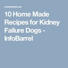 10 Home Made Recipes for Kidney Failure Dogs - InfoBarrel